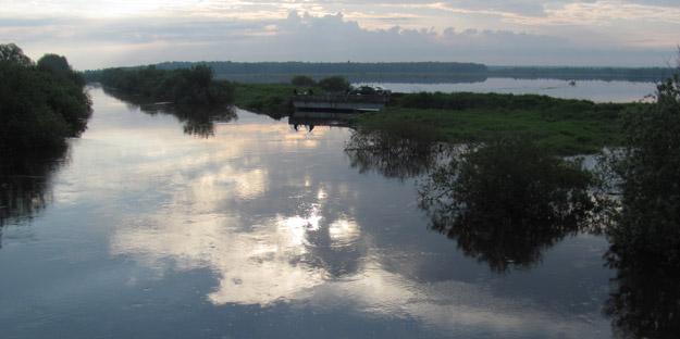 Разливы на реке Дубна, июнь 2020 года. Фото В.В.Конторщикова
