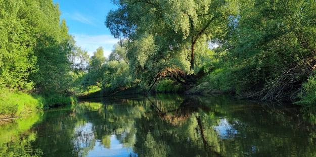 Река Дубна ниже с. Сущёво. Июнь 2021 г. Фото О.С.Гринченко
