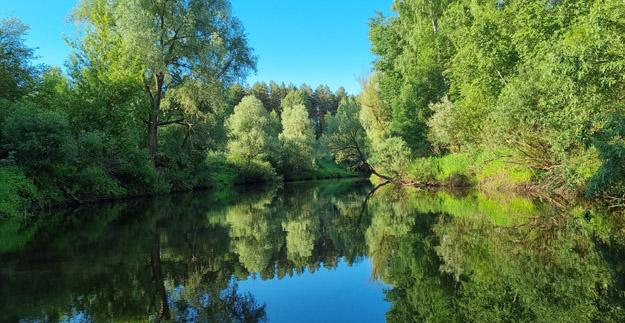 Река Дубна выше Вербилок. Июнь 2021 г. Фото О.С.Гринченко